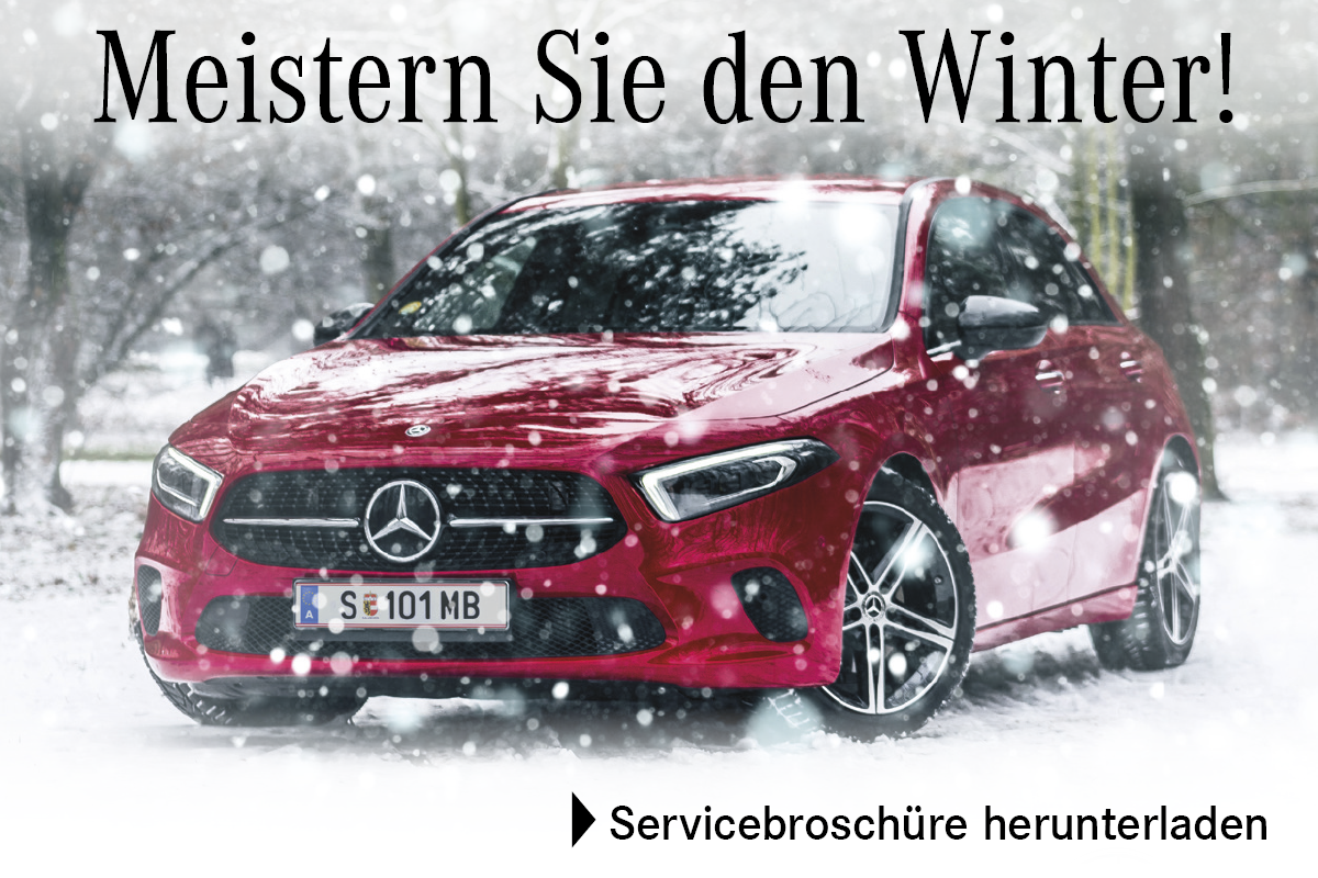Meistern Sie den Winter! Mercedes-Benz Servicebroschüre downloaden